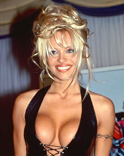 Pamela Anderson Sexy Hd Photoporn Star Actress