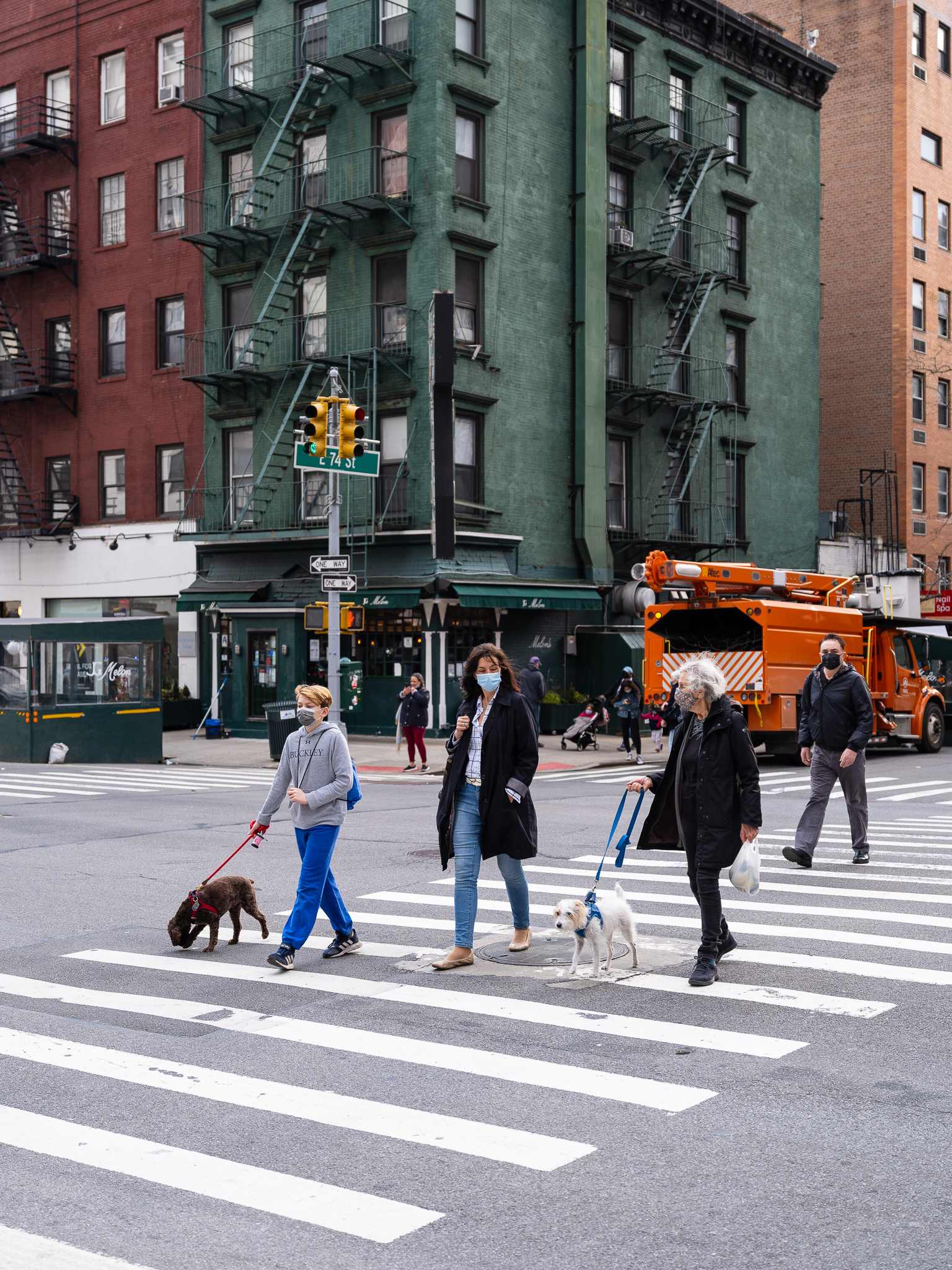 a photo of people walking dogs across the street in new york city