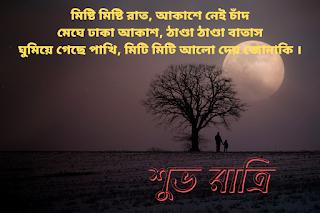 good night bengali shayari image download