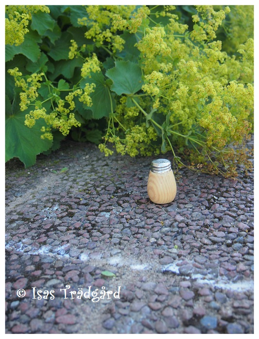 bikarbonat mot ogräs