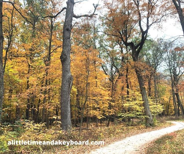 Fall colors dazzle along the Des Plaines River Trail