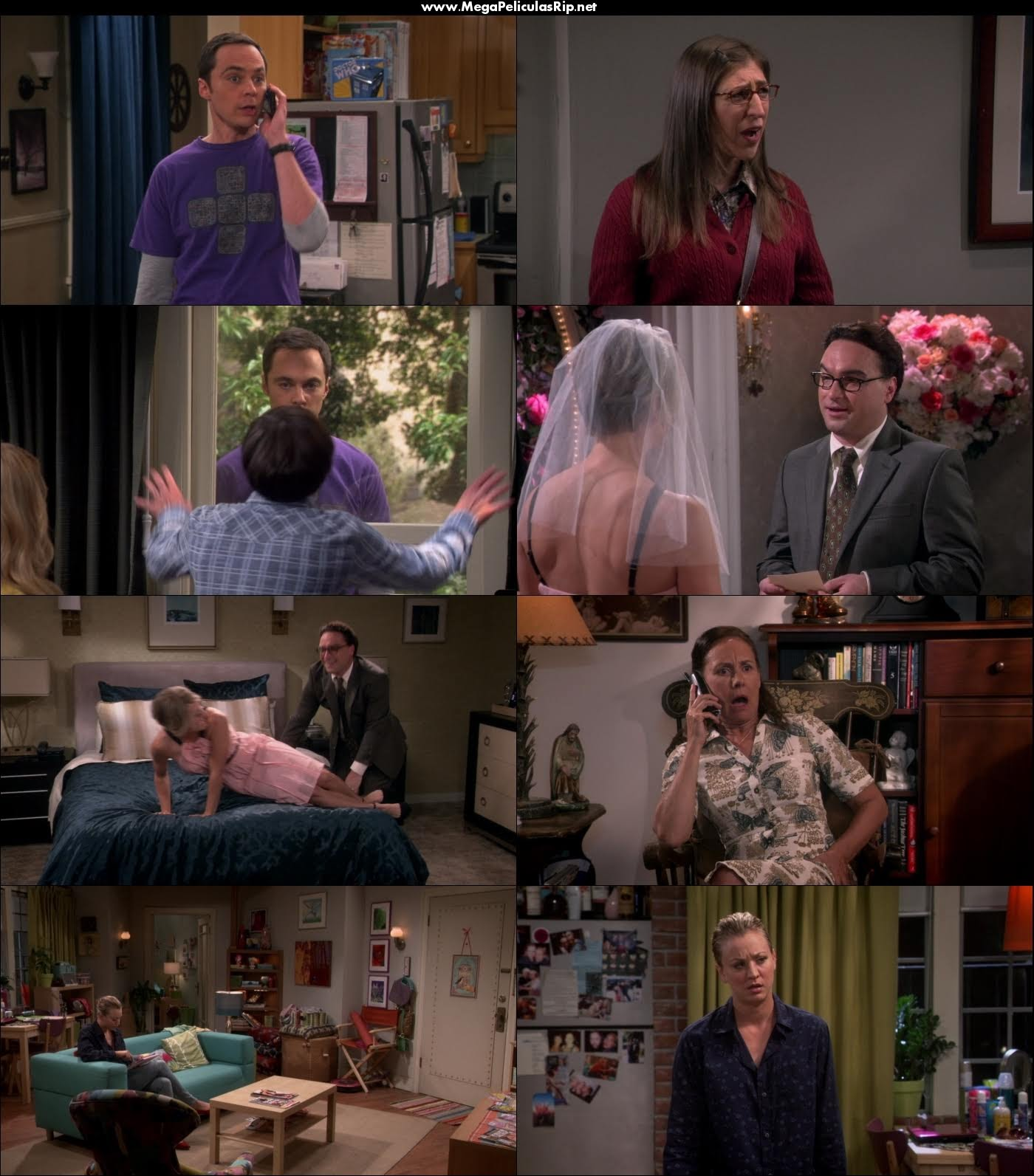 The Big Bang Theory Temporada 9 1080p Latino