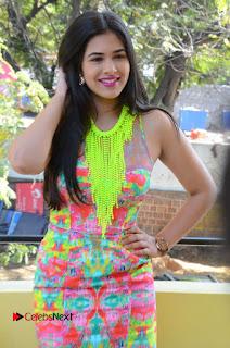 Telugu Actress Prasanna Stills in Short Dress at Inkenti Nuvve Cheppu Press Meet Stills  0078.JPG