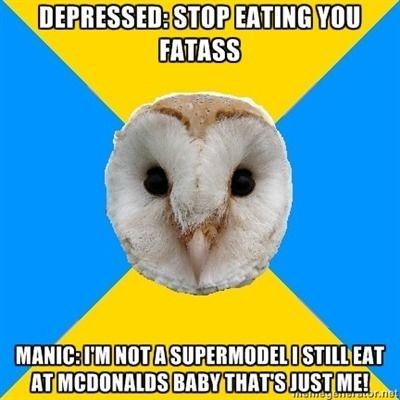 bipolar weight gain and loss bipolar owl