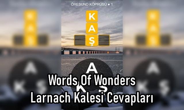 Words Of Wonders Larnach Kalesi Cevaplar