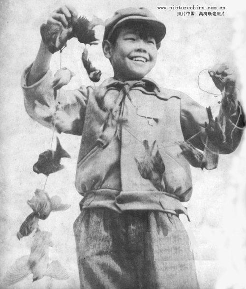 สงครามต่อต้าน นกกระจอก ในประเทศจีน ปี 1958