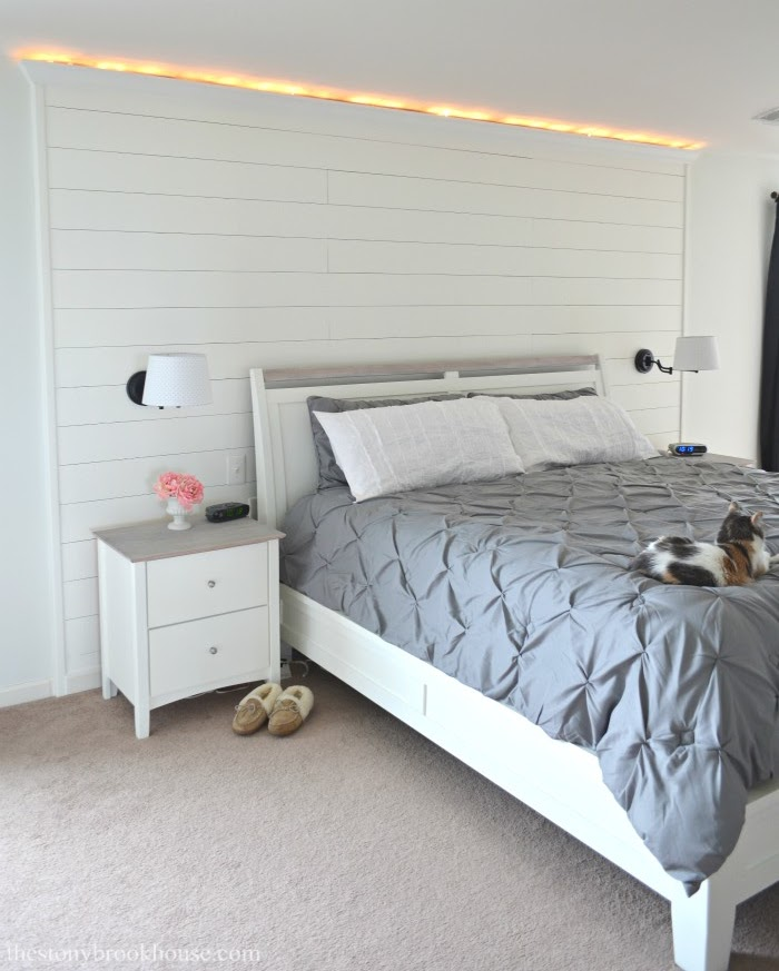 Accent Shiplap wall