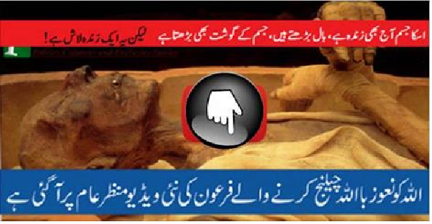 Firon dead body videos