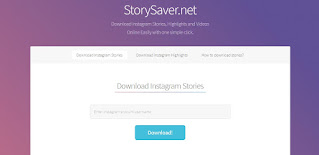 Instagram story downloader online