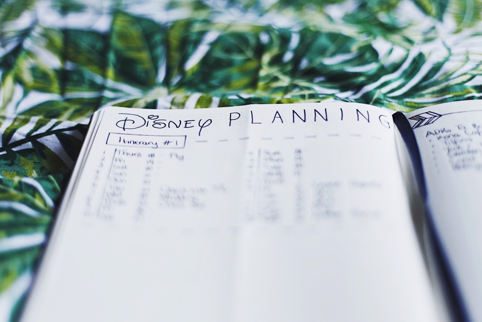 Bullet Journal Disney World Trip Planning