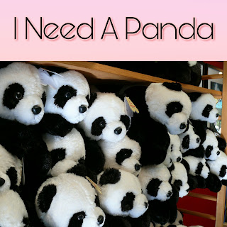 How Can I Convince My Husband To Buy Me A Cute Panda
