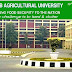 Research Fellow Recruitment Punjab Agricultural University