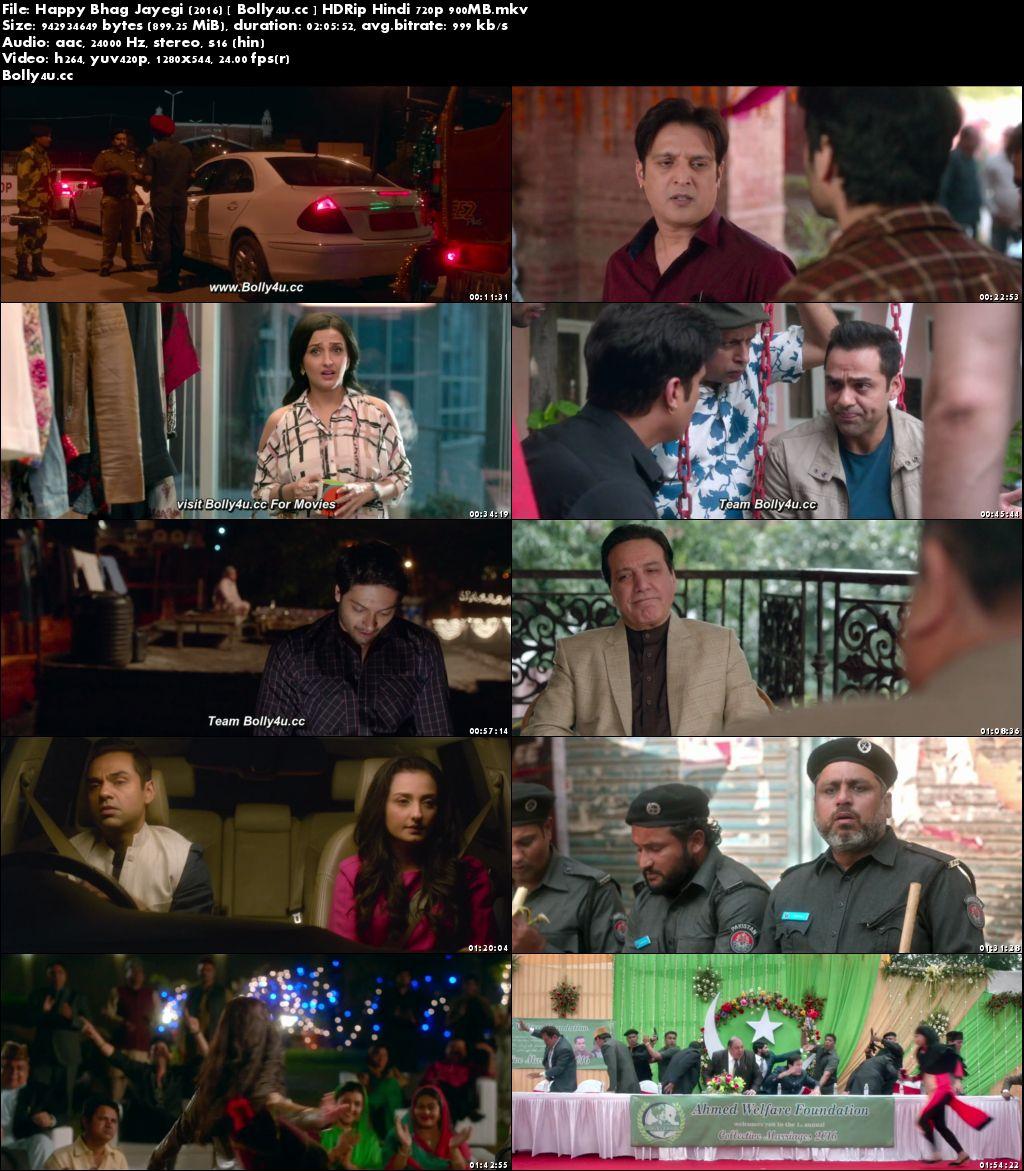 Happy Bhag Jayegi 2016 HDRip 900MB Full Hindi Movie Download 720p