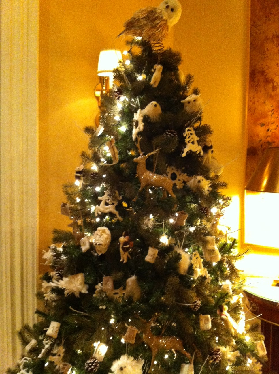 Here Are Photos Of Some The Trees Including Close Ups Special Tree Decorations