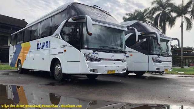 Tiket Bus Damri Pontianak Putussibau, Ini Tarif & Jadwal