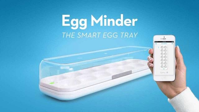 حافظة البيض Quirky Egg Minder