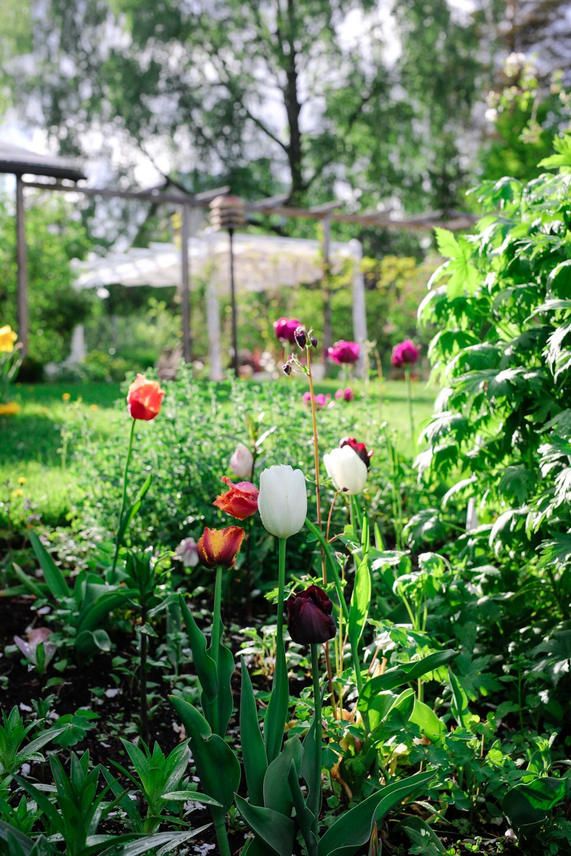 puutarha-perennapenkki-100outdoor