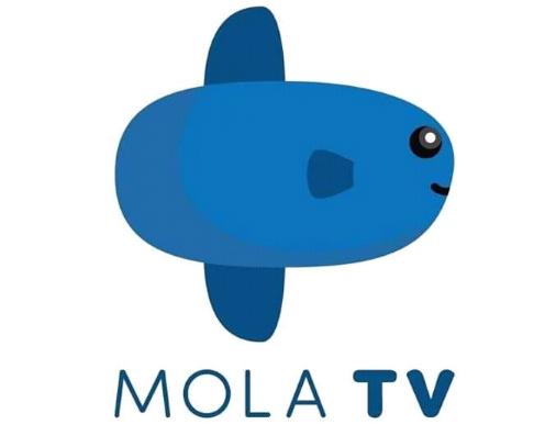 Cara Nonton Live Streaming Liga Inggris 20192020 di Mola TV