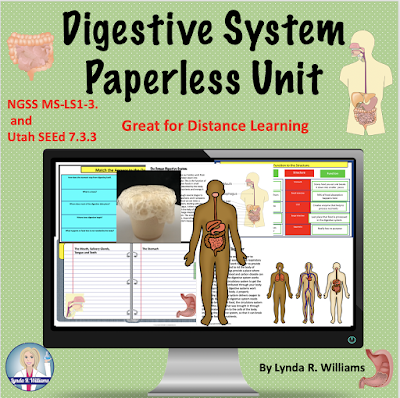 Digestive System Unit for Middle School Science