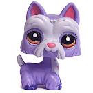 Littlest Pet Shop Multi Pack Scottie (#2260) Pet