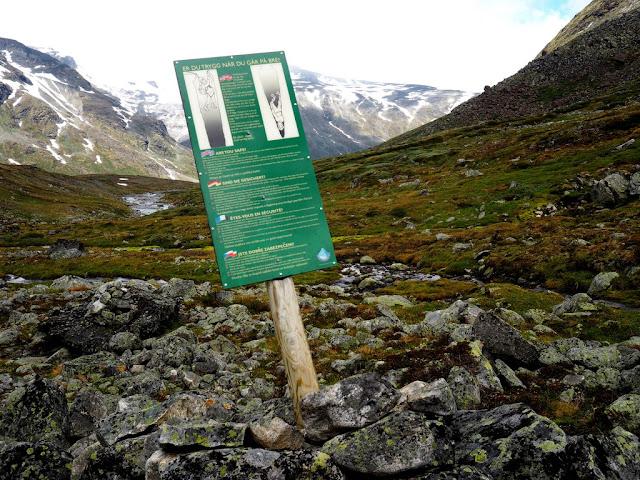 Ledovec, tabule, Jotunheimen, Norsko, trek, příroda