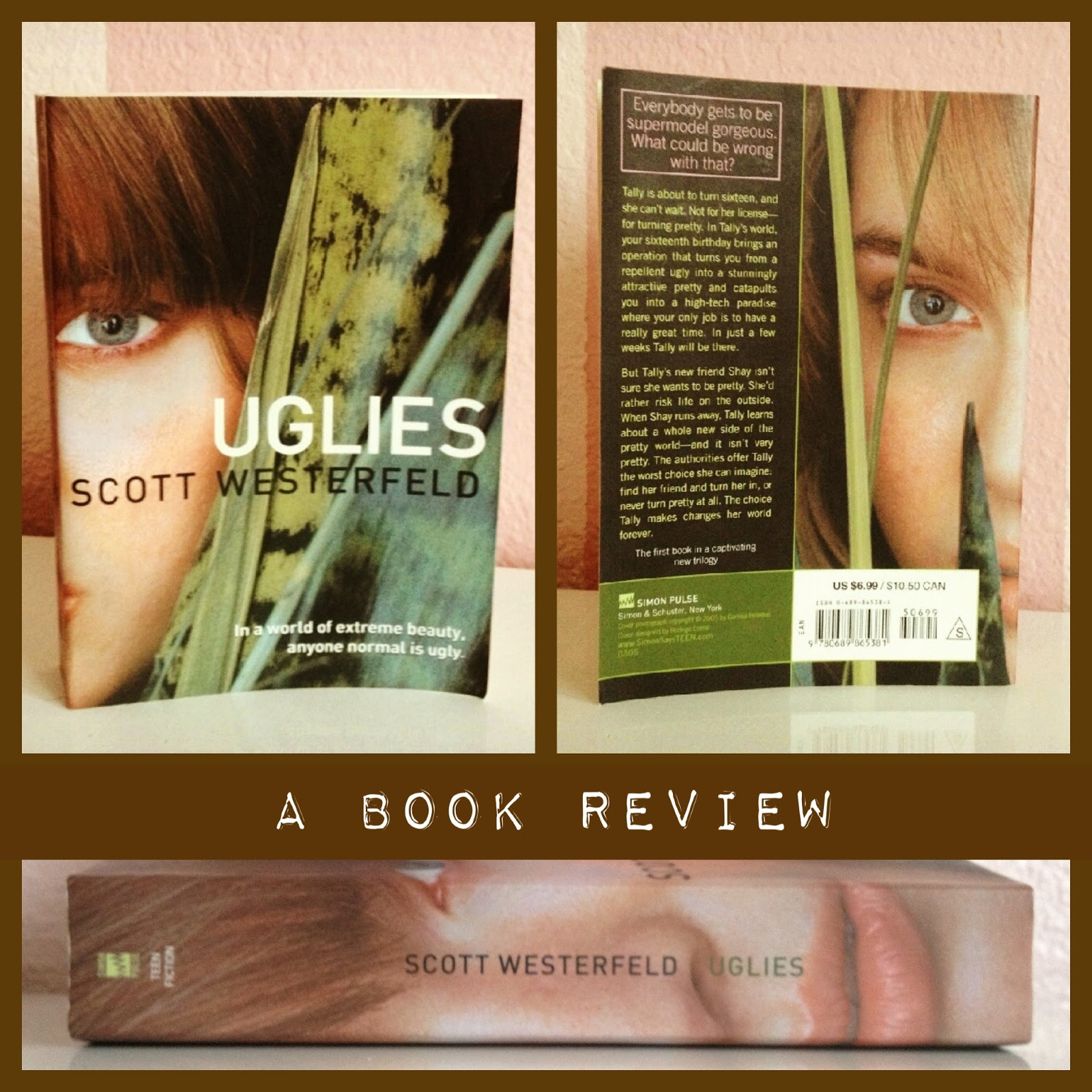 What I Blog About When I Blog About Books: Uglies: A Book ...