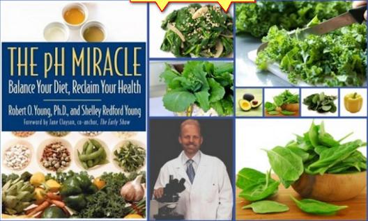Acidic and alkaline foods in the diet
