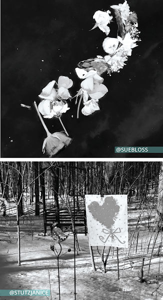 Collage of two photos arranged vertically. Top photo is a garland of flowers floating on water taken by @SueBloss https://www.instagram.com/p/CGt5QB4J96y/. Bottom photo is a snowy forest scene with a drawing of a heart with a bow binderclipped to a barbed wire fence taken by @StutzJanice https://www.instagram.com/p/CK2eH_wAMp3/.