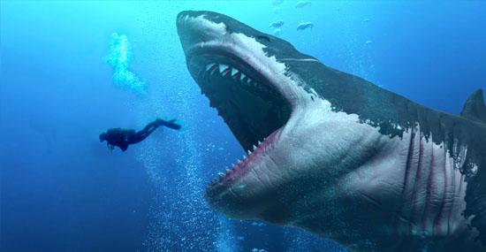 Tubarão maior que um Tiranossauro - Megalodon pode ainda pode existir - Capa