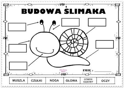 http://przedszkole4rs.szkolnastrona.pl/art,2623,mieszkancy-laki-zaba-i-slimak-piatek-15052020-r