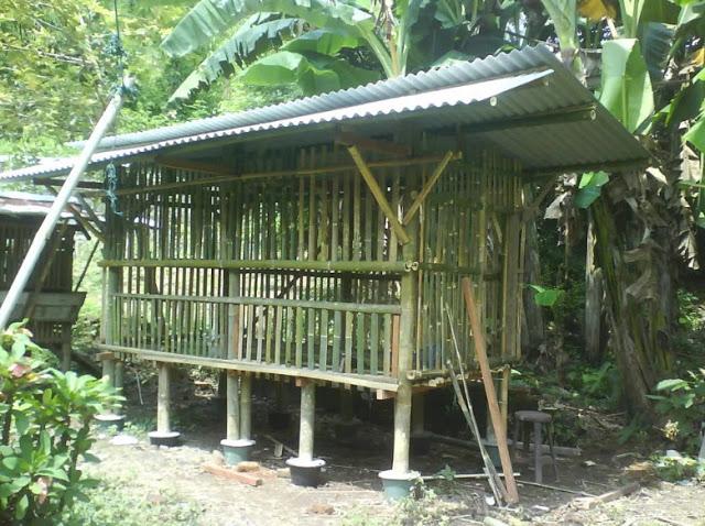 Dinding kandang kambing dari bambu