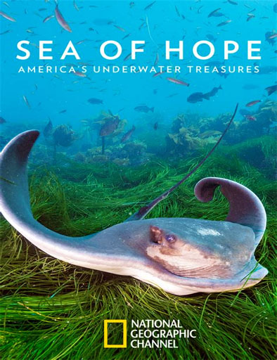Sea of Hope: los tesoros submarinos de Estados Unidos
