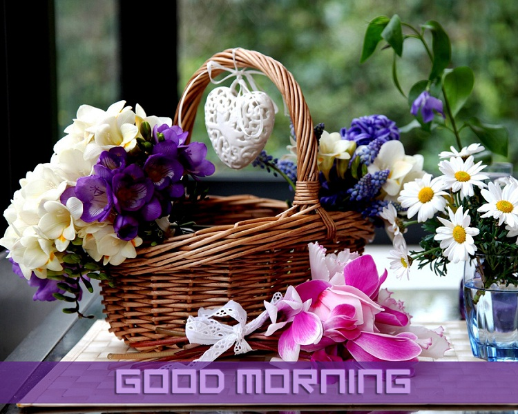 Good Morning Flower Basket Wallpaper for Whatsapp