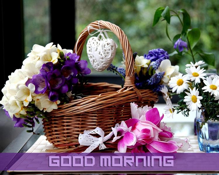 Good Morning Flower Basket Wallpaper for Whatsapp