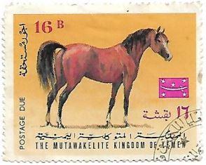 Selo Cavalo árabe castanho