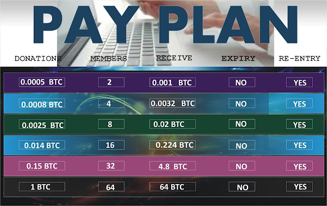 Bitwins PayPlan