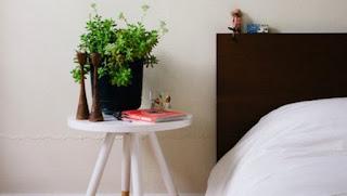 Με αυτά τα φυτά στο δωμάτιο θα κοιμηθείτε σαν πουλάκια