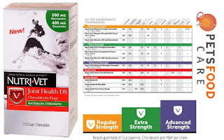 Cat Food For Older Cats With Teeth Problems