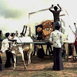 Sustain2Green: Making a Sustainable Impact: India's IT revolution served on Bullock Cart