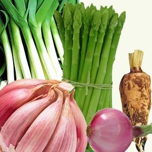 Sumber Makanan Prebiotik