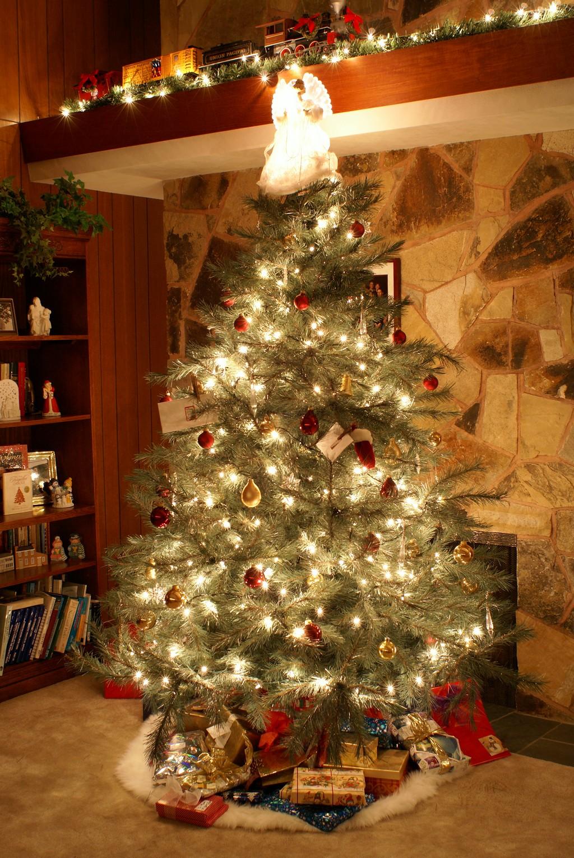 Usa Country Studies Christmas Is Coming To The Usa