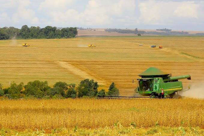 Paraná deve colher 23,9 milhões de toneladas de grãos