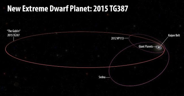"The orbits of the new extreme dwarf planet, 2015 TG387, and its fellow Inner Oort Cloud objects, 2012 VP113 and Sedna, as compared with the rest of the Solar System. 2015 TG387 was nicknamed ""The Goblin"" by the discoverers, as its provisional designation contains TG and the object was first seen near Halloween. 2015 TG387 has a larger semi-major axis than either 2012 VP113 or Sedna, which means it travels much further from the Sun at its most distant point in its orbit, which is around 2,300 AU. Illustration by Roberto Molar Candanosa and Scott Sheppard, courtesy of Carnegie Institution for Science."