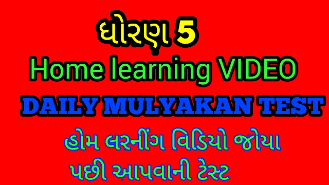 STD 5 HOME LEARNING DAILY MULYANKAN TEST