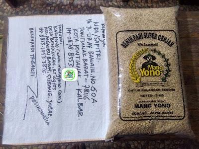 Benih padi yang dibeli NIDA Pontianak, Kalbar. (Sebelum packing karung ).