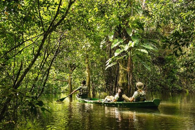 A Amazônia é a maior e mais diversa floresta tropical do mundo