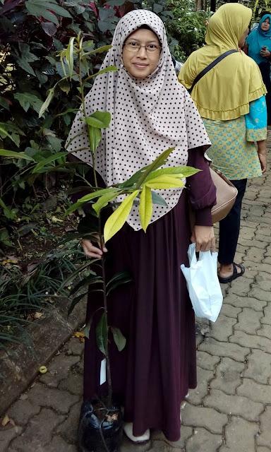 Pohon Bisbul dari Kebun Raya Bogor