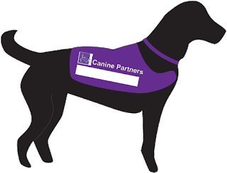 Icon of my assistance dog with a purple collar and working jacket