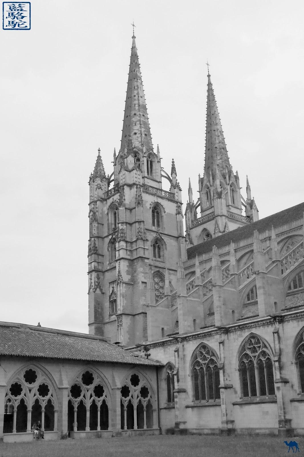 Le Chameau Bleu - Blog Voyage Bayonne France - Cathédrale Sainte Marie de Bayonne