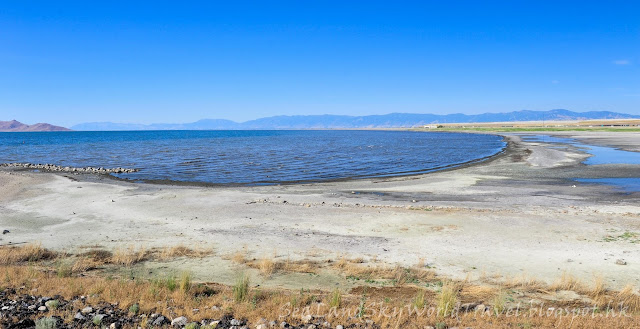 鹽湖城, 大鹽湖, Utah Great Salt Lake